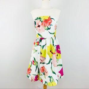🌈NEW Ted Baker floral dress
